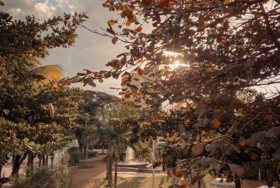 FOTO 035 - Cores-do-outono